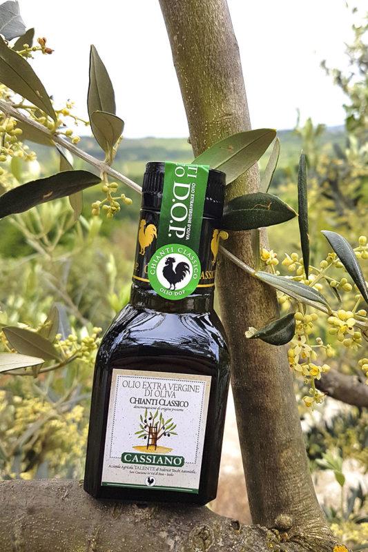 olio-extra-vergine-dop-cassiano